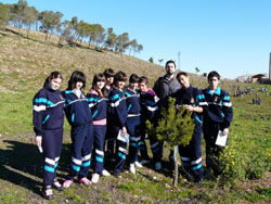 Plantación escolares